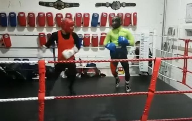 Conor McGregor Boxing Video