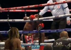 Spence Stopped Brook