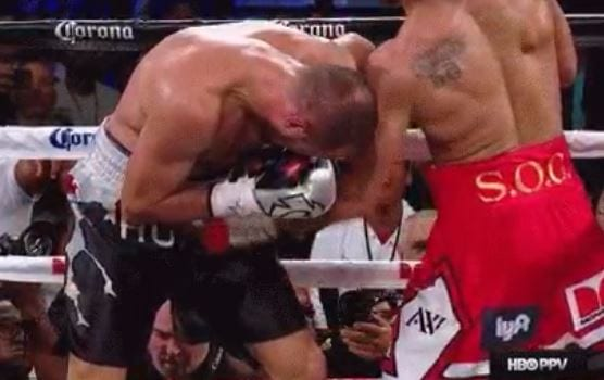 Andre Ward Stopped