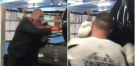 Fury Punching