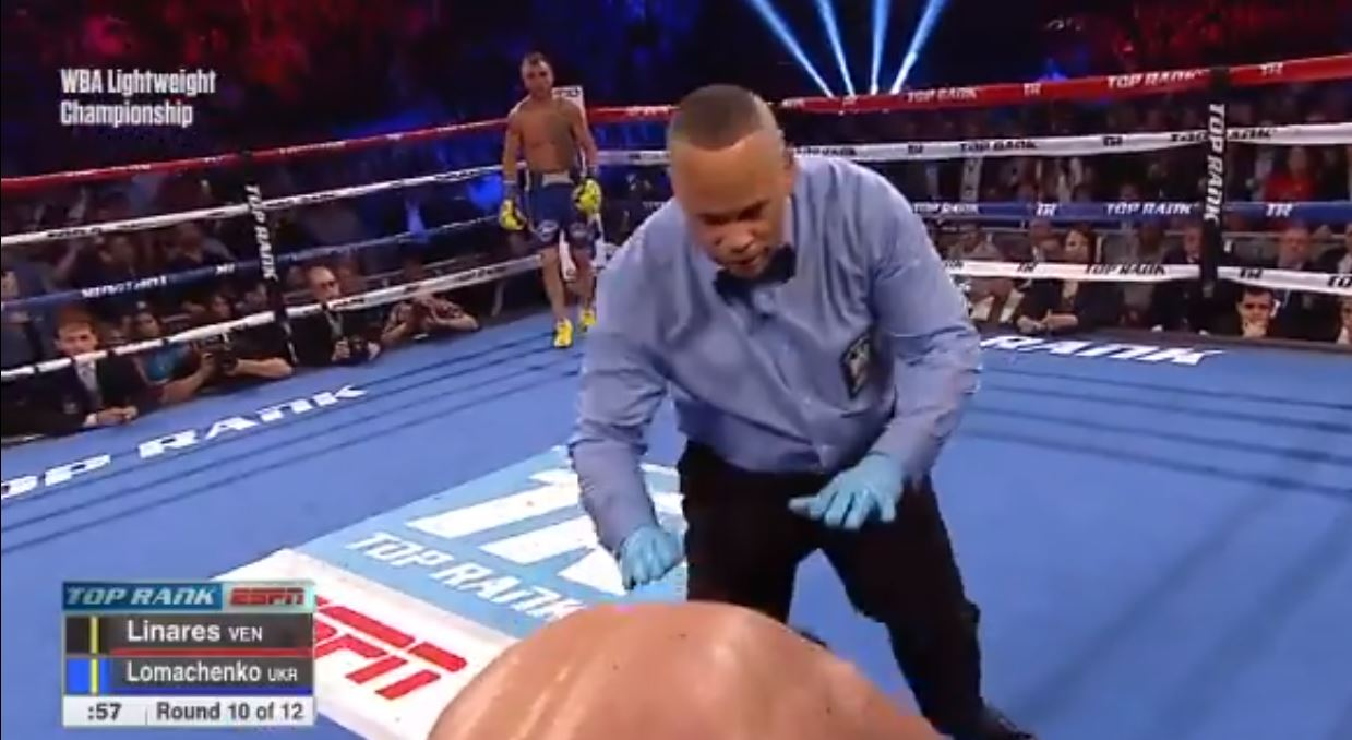 lomachenko body shot