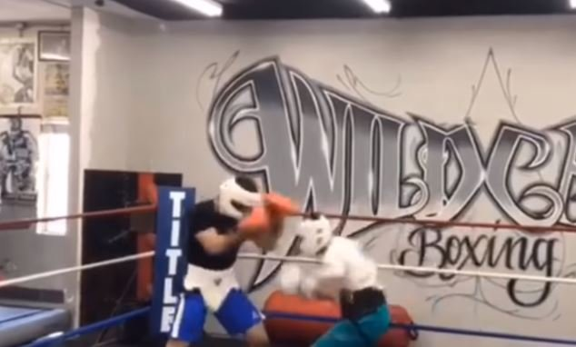 Pacquiao Son Sparring Footage Shows He Could Be Chip Off The Old Block