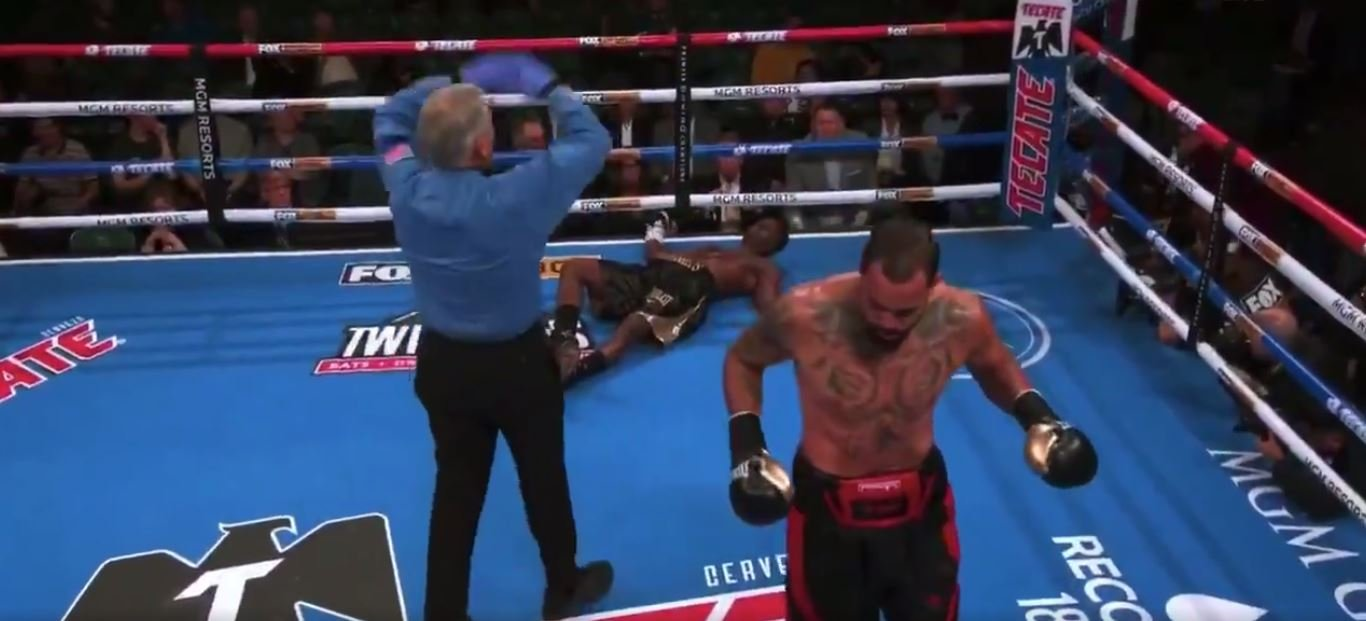 deontay wilder brother knocked out