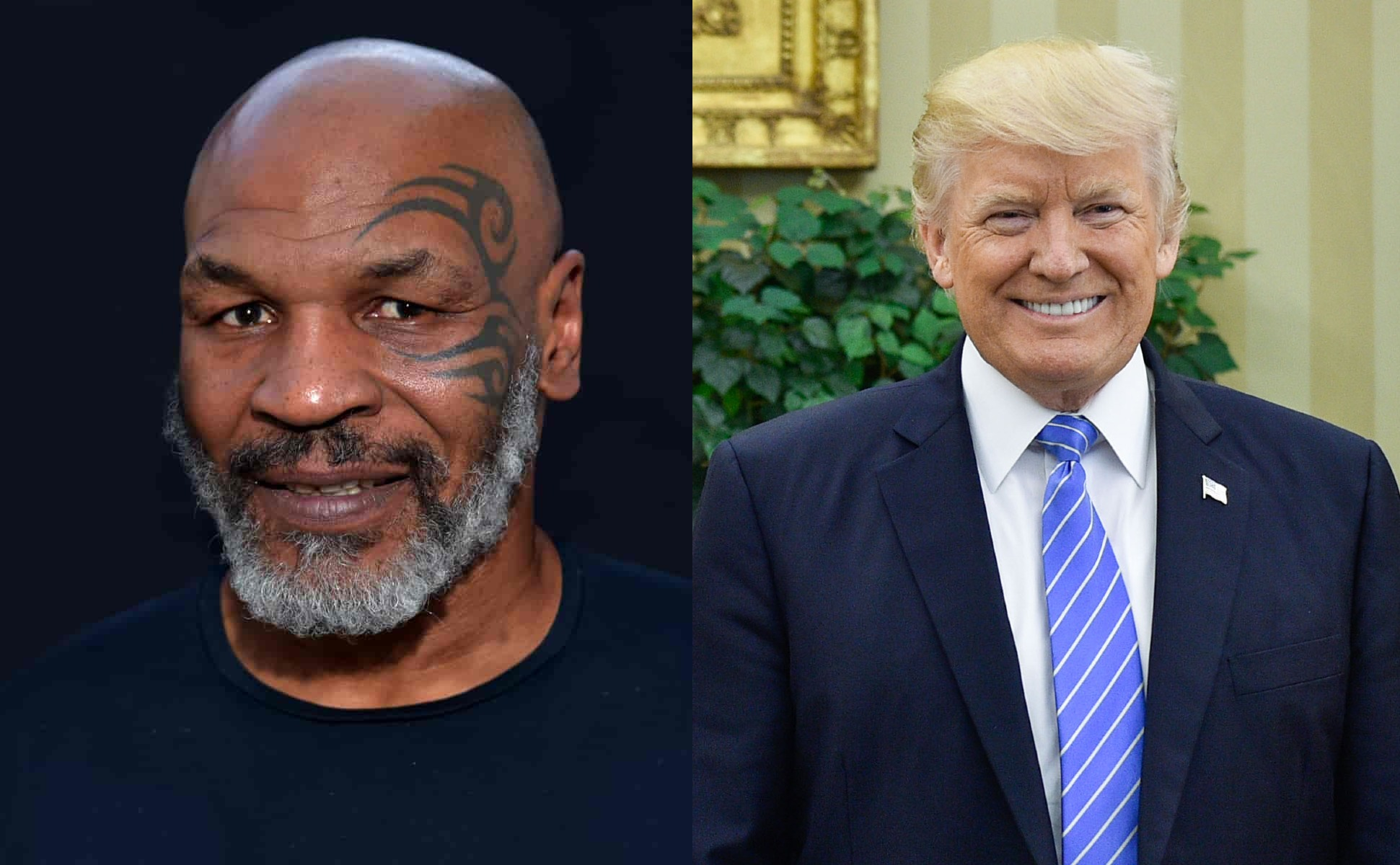 tyson comes clean about trump