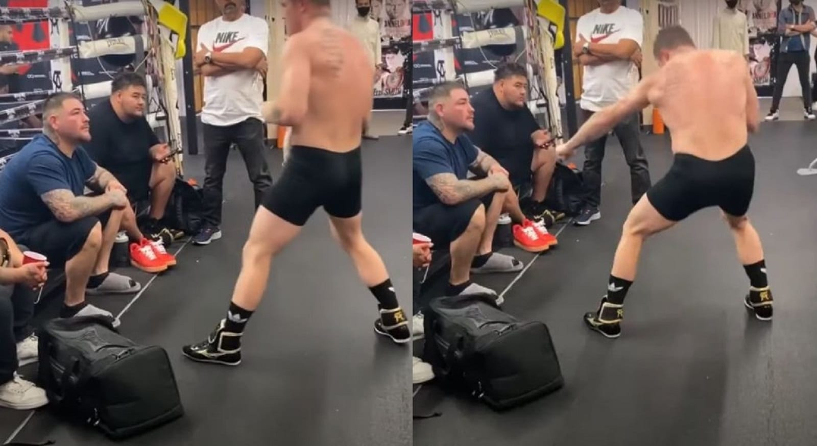 Canelo Shows Andy Ruiz How To Knock Out Arreola